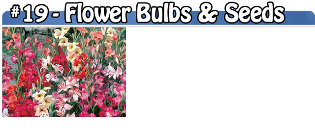 Flower Bulbs & Seeds